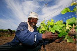 fairtrade-photo-2